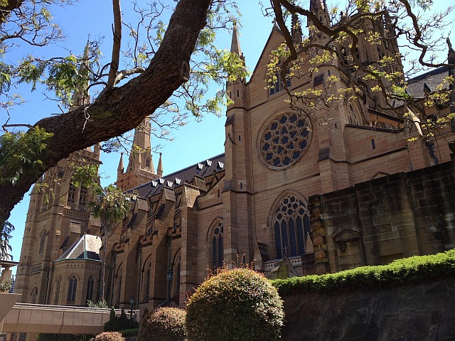 image of St Mary's Cathedral, Sydney